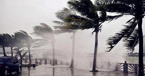 尽量避免前往台风影响地区,不要到海边,海岛游玩. 2.