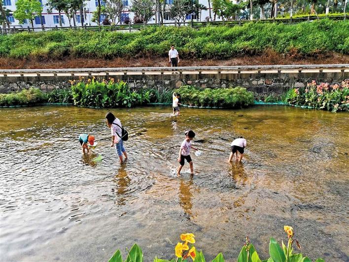 西鄉河畔聞春意 水清岸綠娃嬉戲