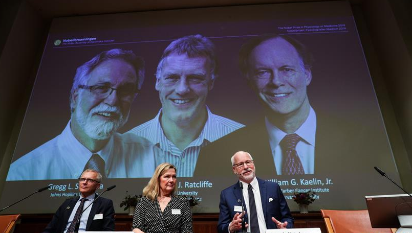 三名科學家分享2019年諾貝爾生理學或醫學獎