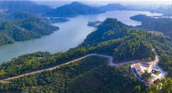"""十年磨礪建成精品綠道 155.2公里綠道串成""""美麗羅湖"""""""