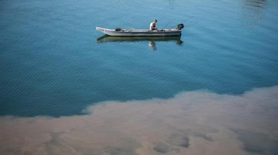 塞爾維亞首都河流污染嚴重 河水呈現兩色