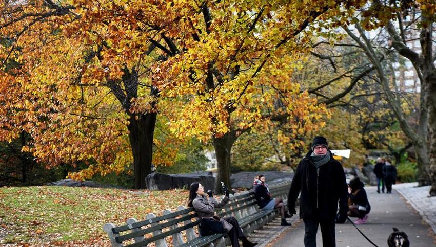 气温骤降 纽约秋意浓