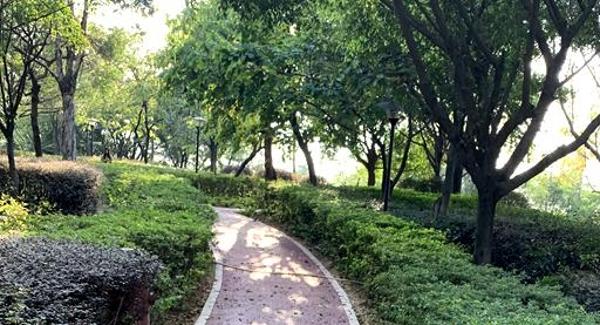 燕罗老旧公园再升级 罗田社区公园健身路径换新装
