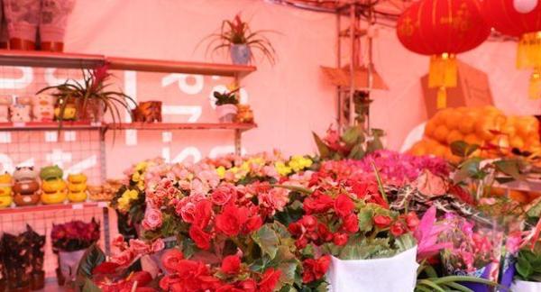 福城街道2020年迎春花市将于1月11日开办