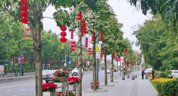 大红灯笼挂起来 龙华处处年味浓