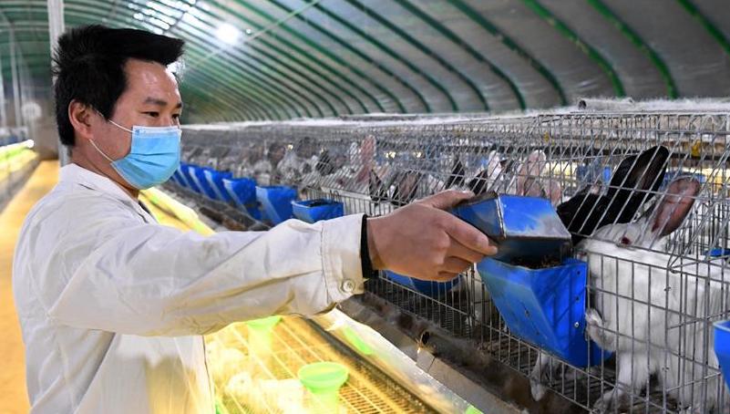 河南孟津:復工復產助扶貧