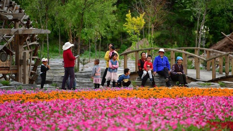 """甘南藏区:全域旅游打造乡村振兴""""绿色引擎"""""""