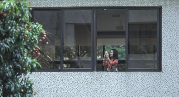 宝安视界 VOL.18 | 又是荔枝成熟时 满树红果压枝低