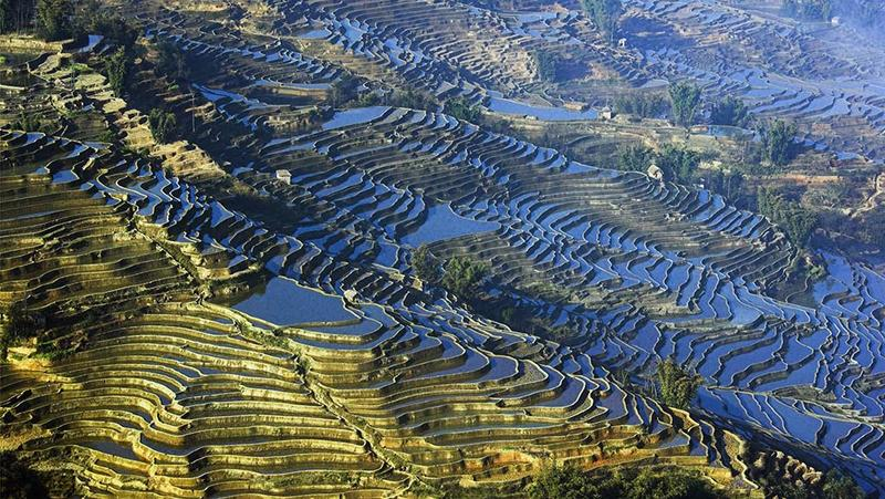 国家发改委:不得将行政建制镇和传统产业园区命名为特色小镇