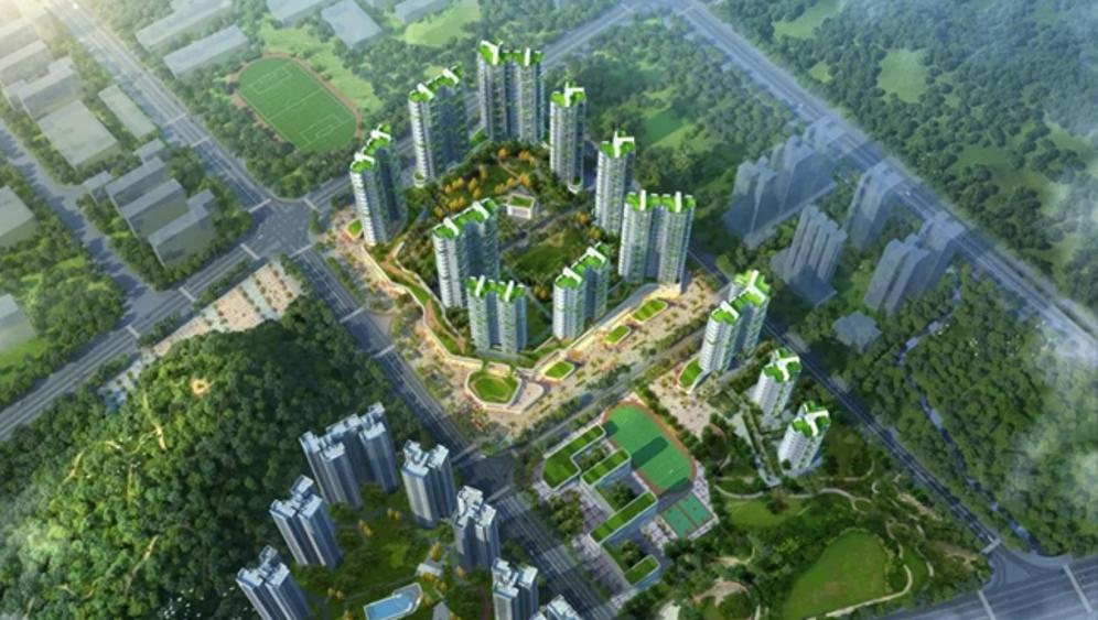 蝶变再加速!大鹏新区再立4个城市更新项目打造滨海新客厅