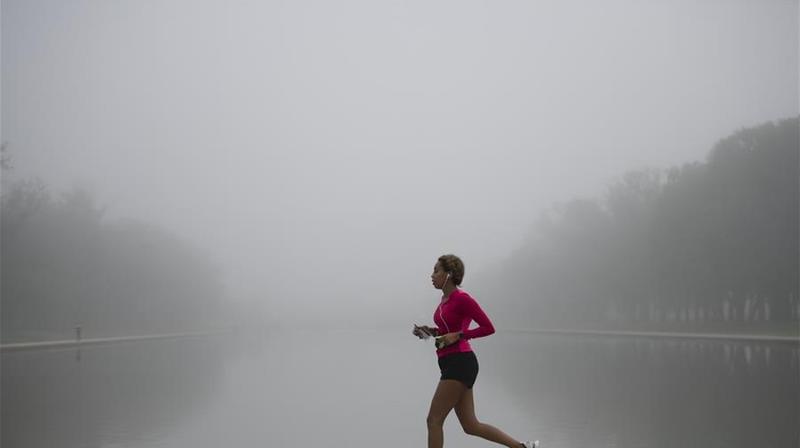 雾锁华盛顿