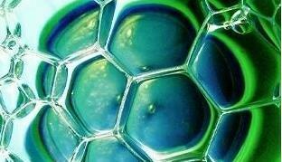 利用细胞直接重编程技术 日本成功培育出肝脏祖细胞