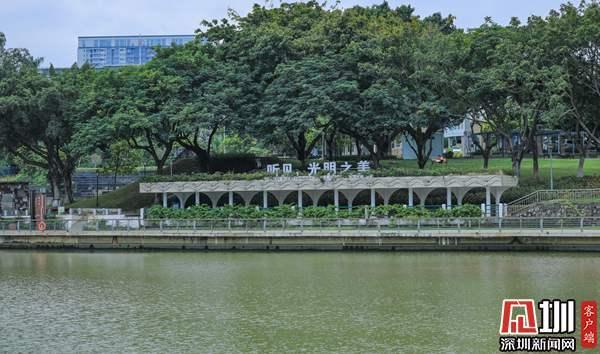 发现光明最美治水景观 | 翠湖公园:人行明镜中,鸟度屏风里