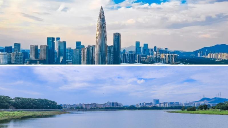 深圳湾超级总部基地首个超高层项目封顶