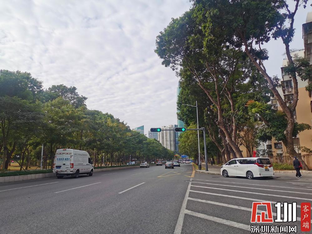 最低气温10-11℃ 深圳发布今年入秋以来第一个寒冷预警信号
