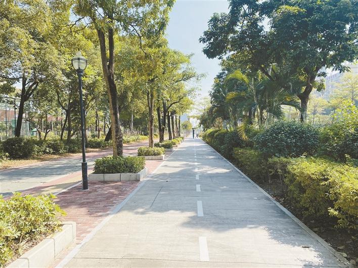 宝安60公里新式自行车道预计2月底完工