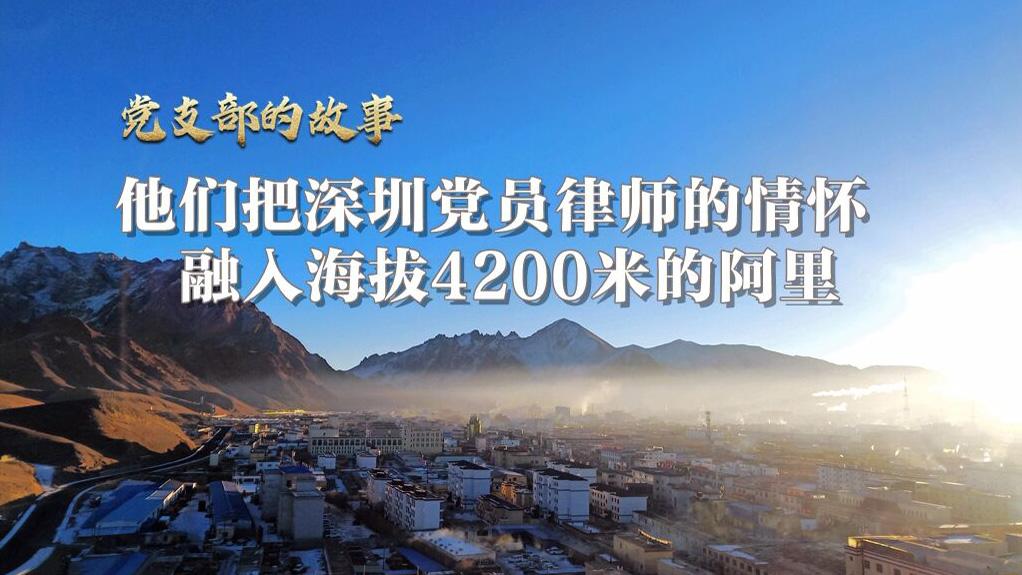 他们把深圳党员律师的情怀,融入海拔4200米的阿里