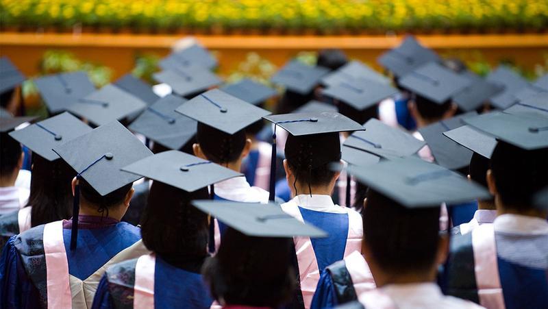疫情之下,名校毕业生都去哪儿了