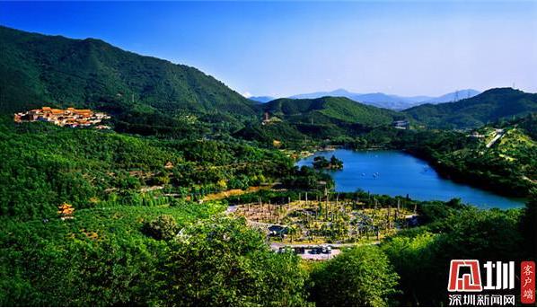 春节期间,弘法寺、仙湖植物园这些时段暂停对外开放