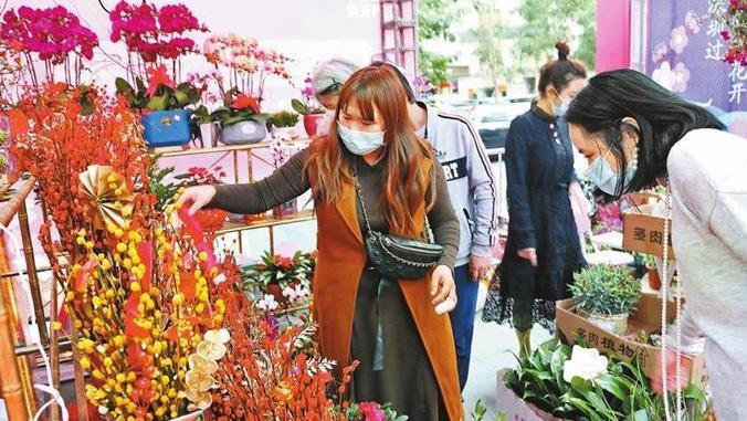 深新早点丨花市开到家门口,深圳74个街道近3200个迎春花购花档正式开档