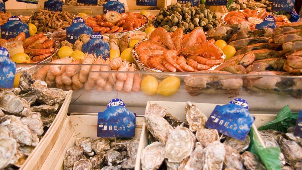 德国专家:核废水污染物将通过海洋食物链到达消费者餐盘