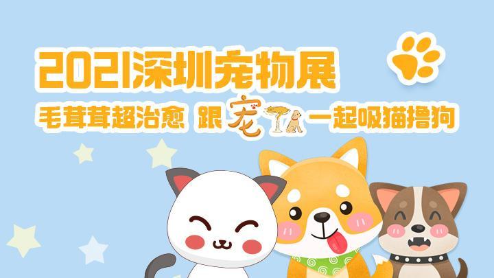回放 2021深圳宠物展来了!跟宠TA一起吸猫撸狗