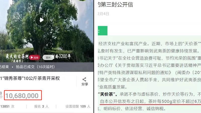 10公斤茶鲜叶拍出1068万元,真的值吗?