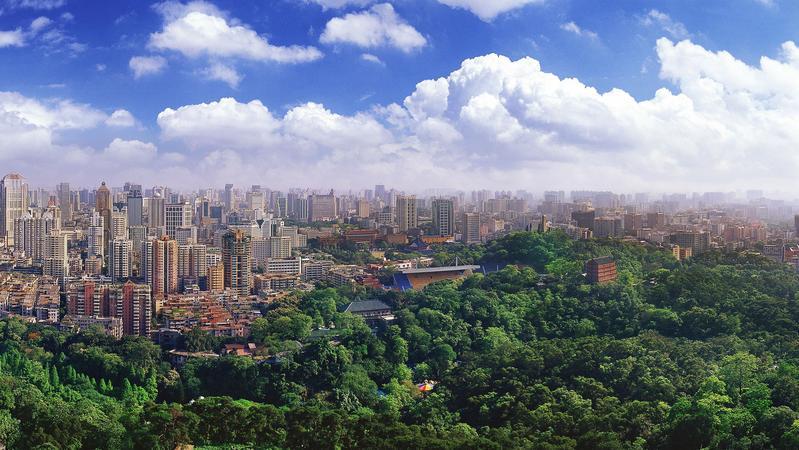 广东加快春季造林绿化 将制定碳中和林业行动计划