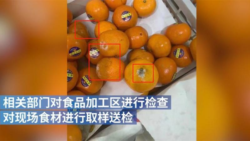 霉变橘子,腐烂辣椒……合肥一幼儿园疑提供问题食品 当地政府已介入调查