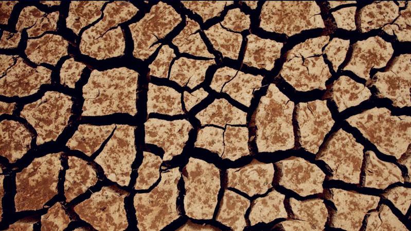 美国西部大片区域遭遇大旱 加州两县进入紧急状态