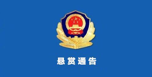 悬赏200多万,海南警方发布通缉涉黑组织在逃人员通告