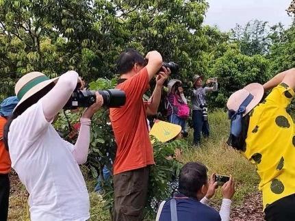 振兴乡村公益摄影活动在斗门区小赤坎村举行