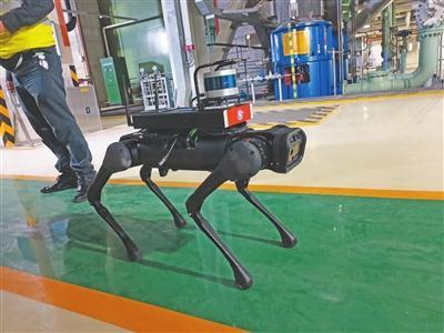 """先进!中山嘉明电力有限公司用""""机器狗""""巡检设备"""