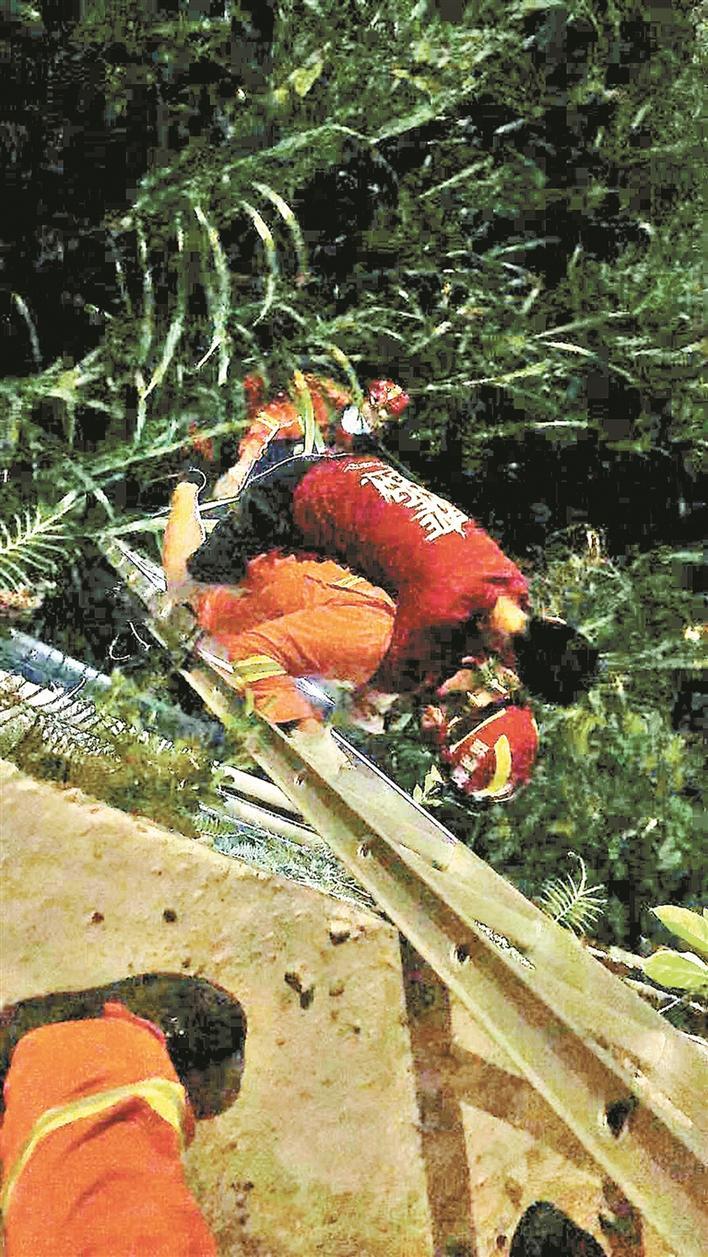"""走路看手机 男子掉桥下 消防员""""负重爬梯""""驮人脱险"""