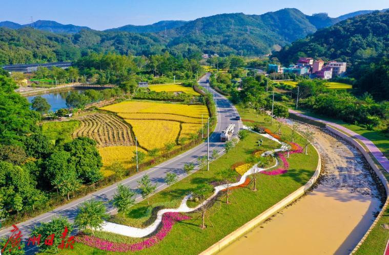 基建全面提升,广州乡村宜业宜居