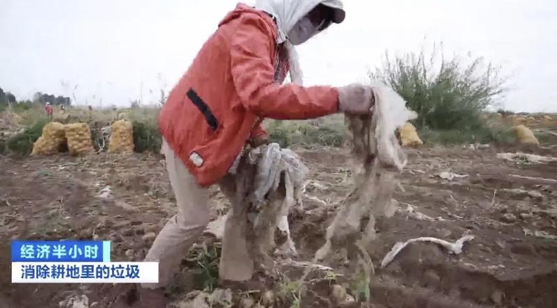 """中国3亿亩土地覆盖地膜!""""致富膜""""变白色污染,咋消除?近百亿元大市场爆发→"""