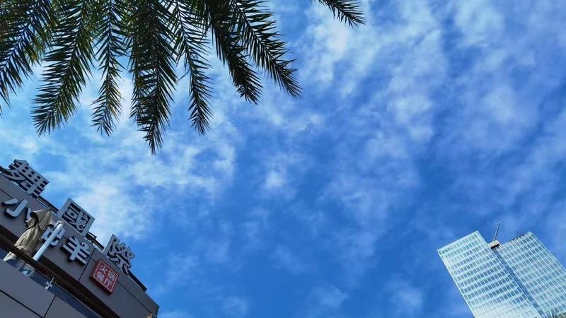 """深圳全市""""芥末绿"""",抬头就见""""深圳蓝""""!此刻的天气你给多少分?"""