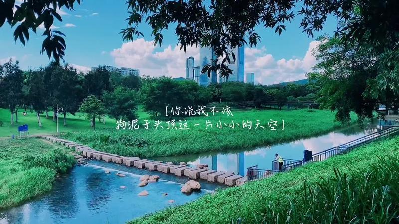 深圳·观色 | 秋天,在这个地方是蓝色的