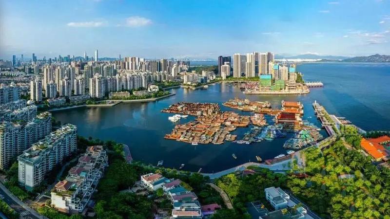 直击!蛇口渔港改造传新进展!将打造成都市生活休闲渔港