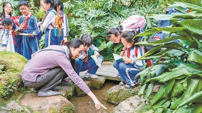 首批深圳自然教育活动优秀样板揭晓 60个活动样板树自然教育典范