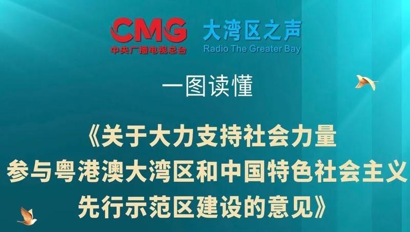 重磅!一图读懂:深圳推进粤港澳大湾区建设首份面向社会公开文件