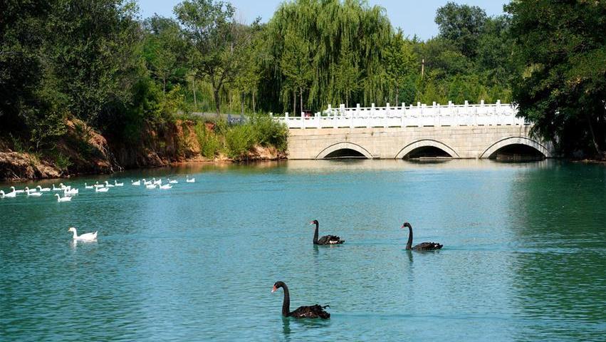 河北沙河:美丽乡村入画来