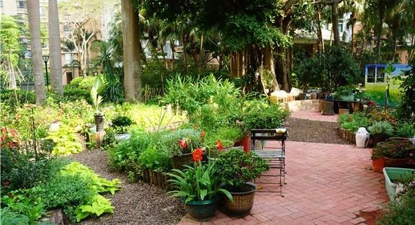 罗湖这15片绿地变身花园 如何设计你说了算