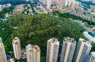 城市更新、老旧小区改造、城中村综合整治 深圳正全力打造高品质城市空间格局