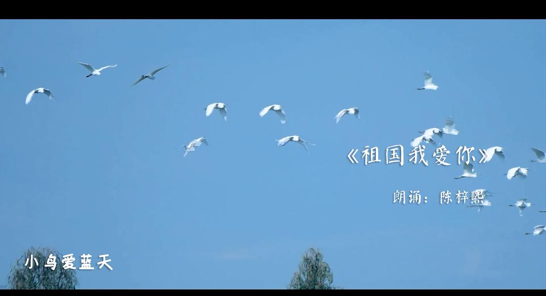 葵涌办事处40名孩子用自己的歌声表白祖国!