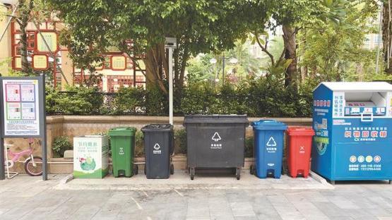 城中村垃圾分类新见闻:小车一天三次上门收餐厨垃圾