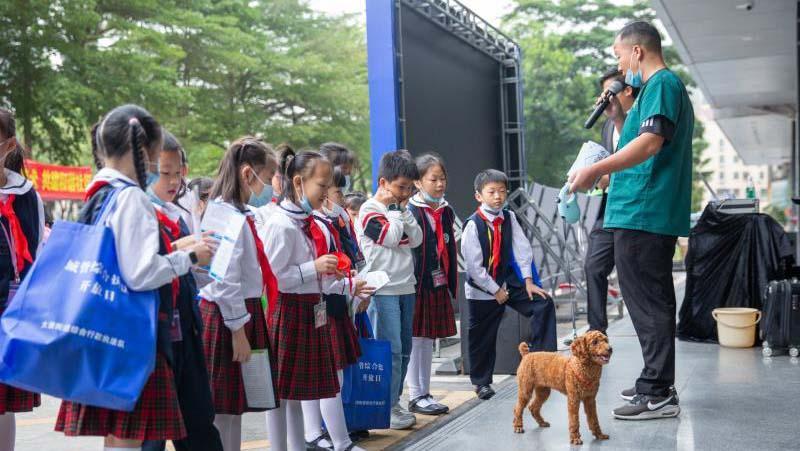 深圳城管迎来综合执法开放日 全市74个街道执法队首次统一开放