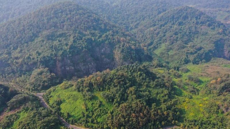 """重庆九龙坡:修复矿坑""""疮疤""""  绿化美丽家园"""