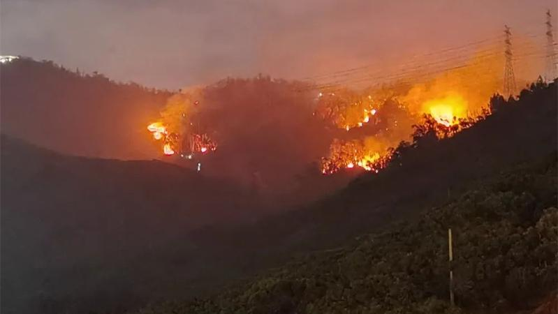 深新早点丨大南山山火已被扑灭,无人员伤亡,无重要设施受影响
