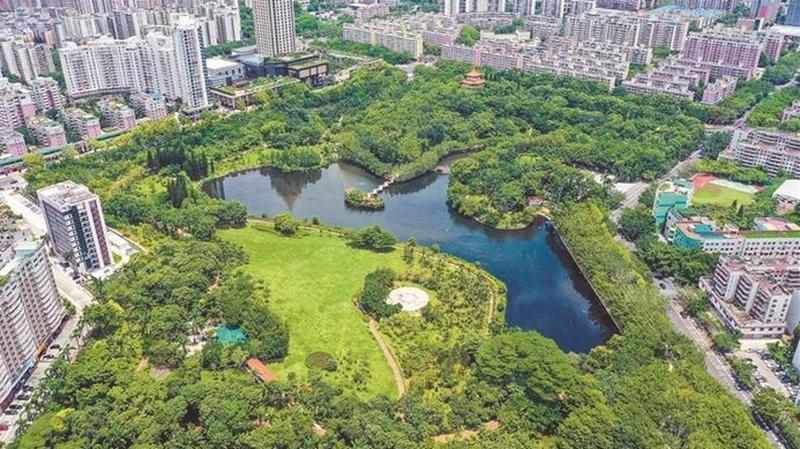 去年龙岗区新建成4座公园
